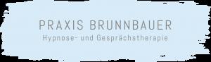 Praxis Brunnbauer